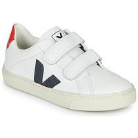 Skor Pojkar Sneakers Veja SMALL-ESPLAR-VELCRO Vit / Blå / Röd