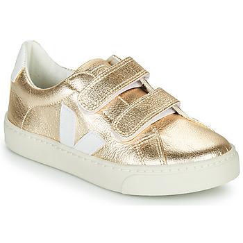 Skor Flickor Sneakers Veja SMALL-ESPLAR-VELCRO Guldfärgad / Vit