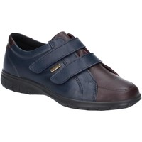 Skor Dam Sneakers Cotswold  Marinblått/brun