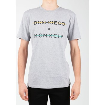 textil Herr T-shirts DC Shoes DC SEDYZT03760-KNFH grey