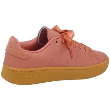 Skor Dam Sneakers adidas Originals Advantage Bold Rosa,Honumg