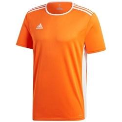 textil Herr T-shirts adidas Originals Entrada 18 Orange