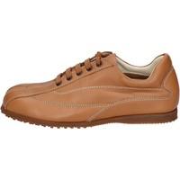 Skor Herr Sneakers Hogan Sneakers BN129 Brun