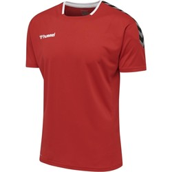 textil T-shirts Hummel Maillot  hmlAUTHENTIC Poly HML rouge