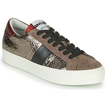 Skor Dam Sneakers Meline PL1810 Brons / Röd