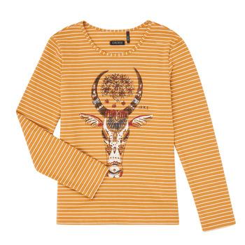 textil Flickor Långärmade T-shirts Ikks XR10102 Brun