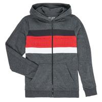 textil Pojkar Sweatshirts Teddy Smith ANY Svart