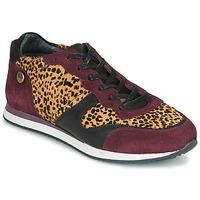 Skor Dam Sneakers Pataugas IDOL/I F4E Bordeaux / Leopard