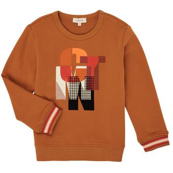textil Pojkar Sweatshirts Catimini CR15024-63-C Brun