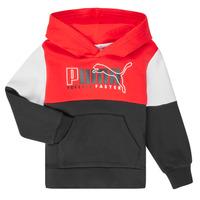 textil Pojkar Sweatshirts Puma ALPHA HOODY Flerfärgad