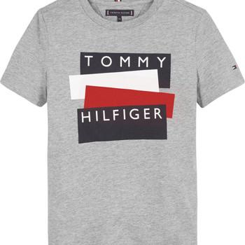 textil Pojkar T-shirts Tommy Hilfiger KB0KB05849-P6U Grå