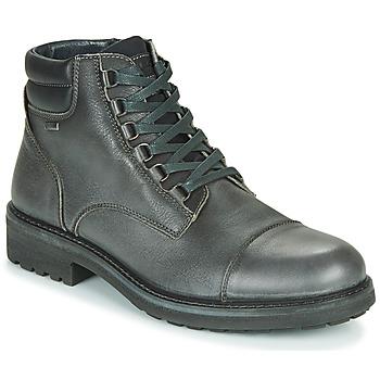 Skor Herr Boots IgI&CO UOMO FREDDY GTX Grå