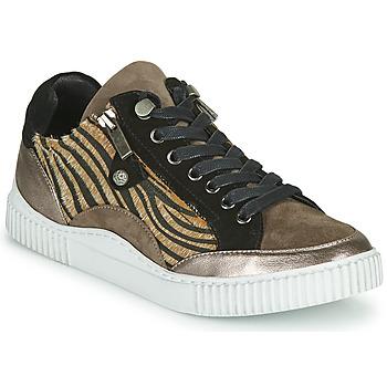 Skor Dam Sneakers Regard IDEM V6 CRIS TAUPE Brun