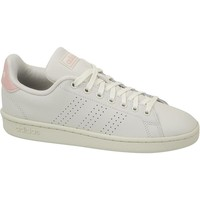 Skor Dam Sneakers adidas Originals Advantage Vit