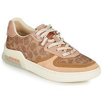 Skor Dam Sneakers Coach CITYSOLE Cognac / Beige