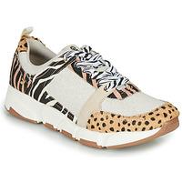 Skor Dam Sneakers Gioseppo CREAZZO Leopard