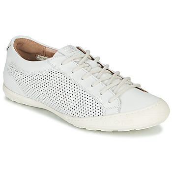 Skor Dam Sneakers PLDM by Palladium GRACIEUSE LEA Vit