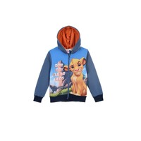 textil Pojkar Sweatshirts TEAM HEROES LION KING SWEAT Flerfärgad
