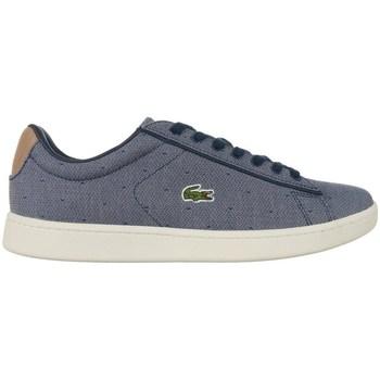 Skor Dam Sneakers Lacoste Carnaby Evo Gråa