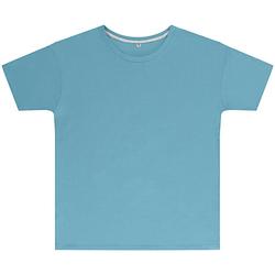textil Barn T-shirts Sg SGTEEK Himmelblått