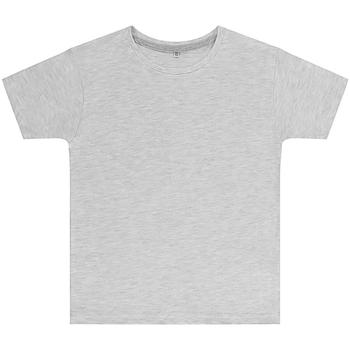 textil Barn T-shirts Sg SGTEEK Askgrå