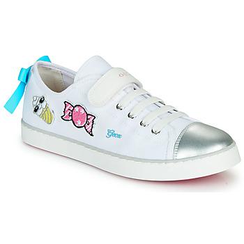 Skor Flickor Sneakers Geox JR CIAK FILLE Vit / Silver