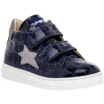 Skor Flickor Sneakers Naturino FALCOTTO 2C06 SASHA BLEU Blu