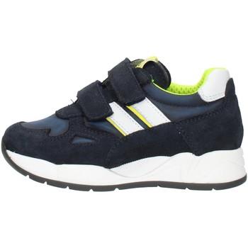 Skor Pojkar Sneakers Nero Giardini I023910M Blue