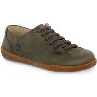 Skor Herr Sneakers Bioline FUMO EGEO INGRASSATO Marrone