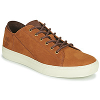 Skor Herr Sneakers Timberland ADV 2.0 CUPSOLE MODERN OX Cognac