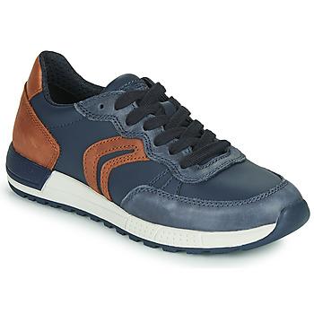 Skor Pojkar Sneakers Geox J ALBEN BOY Blå