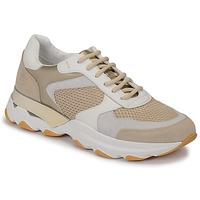 Skor Dam Sneakers Lumberjack SWAY Beige / Vit