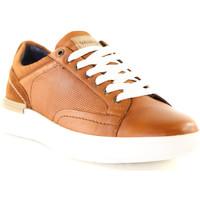 Skor Herr Sneakers Wrangler WM01181A Brun