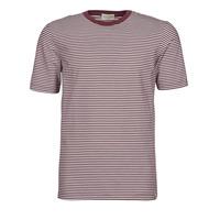 textil Herr T-shirts Scotch & Soda 160847 Röd / Vit