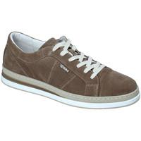 Skor Herr Sneakers IgI&CO 3138322 Grön