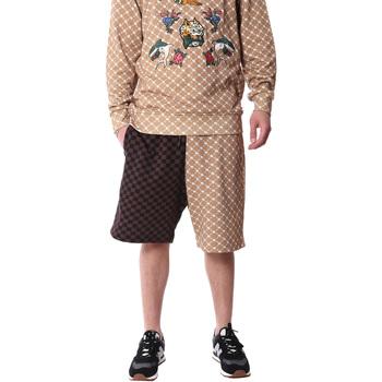 textil Herr Shorts / Bermudas Sprayground 20SP029 Brun