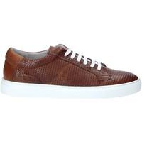 Skor Herr Sneakers Rogers DV 08 Brun