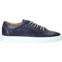 Skor Herr Sneakers Rogers DV 08 Blå
