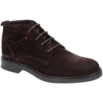 Skor Herr Boots Rogers 2020 Brun