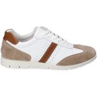 Skor Herr Sneakers IgI&CO 3121811 Vit