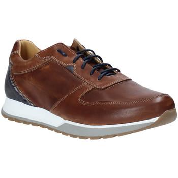 Skor Herr Sneakers Rogers 5068 Brun
