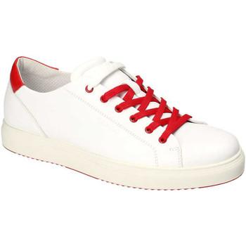 Skor Herr Sneakers IgI&CO 3132700 Vit