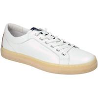 Skor Herr Sneakers IgI&CO 3134500 Vit