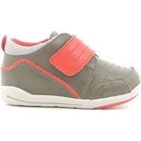Skor Barn Sneakers Chicco 01056498000000 Brun