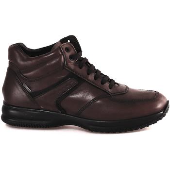 Skor Herr Höga sneakers IgI&CO 2120911 Brun