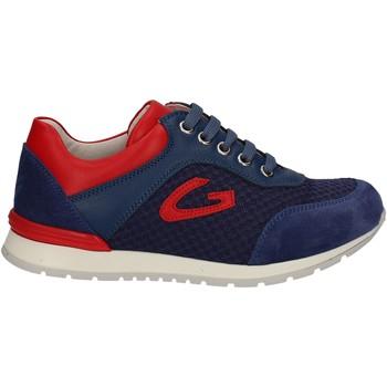 Skor Barn Sneakers Alberto Guardiani GK23301 Blå