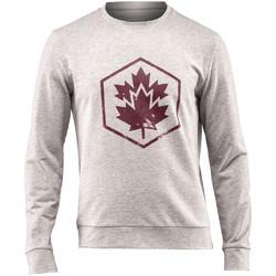 textil Herr Sweatshirts Lumberjack CM60142 001 502 Grå