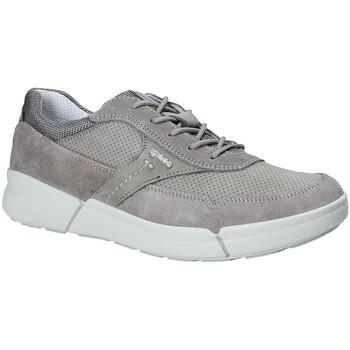 Skor Herr Sneakers IgI&CO 1126 Grå