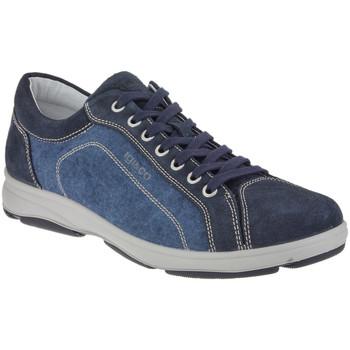 Skor Herr Sneakers IgI&CO 1113 Blå