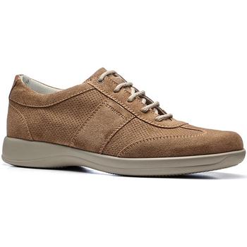 Skor Herr Sneakers Stonefly 110611 Brun